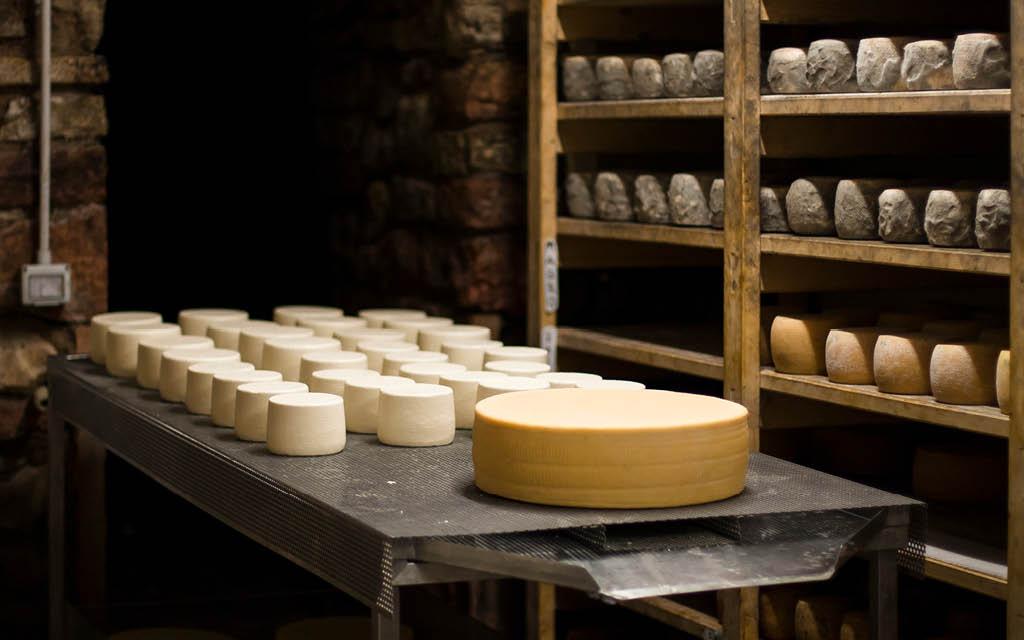 7 quesos pasteurizados para embarazadas realmente sabrosos
